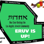 Shabbat Ki Tavo – the Eruv is UP